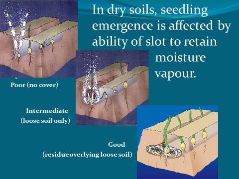 Retention of moisture vapour